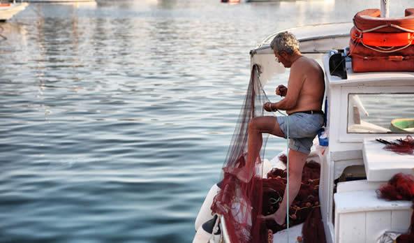 Aegina in Modern Times
