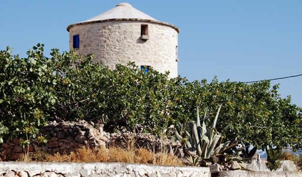 History of Aegina