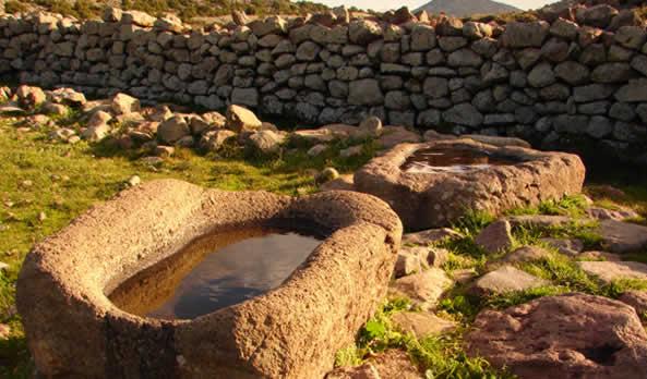 Aegina's Environment
